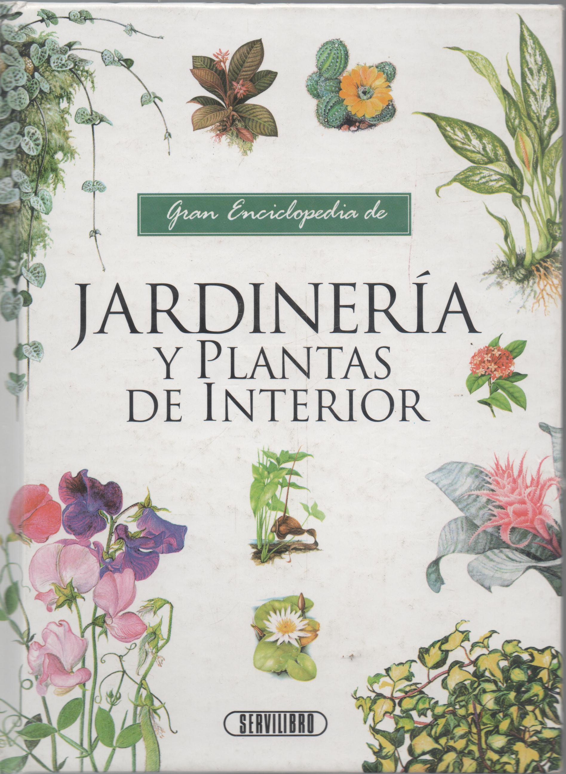 Jardiner a y plantas de interior comprar - Comprar plantas de interior ...